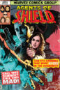 Marvel's Agents of S.H.I.E.L.D. Season 2 21 by Sook.jpg