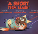 A Short Term Leash