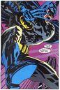 Batman 0720.JPG