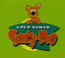 Szczeniak zwany Scooby Doo