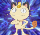 Anime Meowth