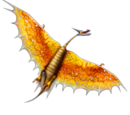Taifumerang