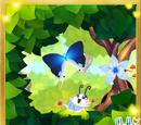 Large Fairy Hairstreak