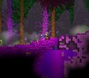 Proto-World