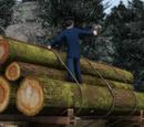 Hill Logs
