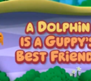 A Dolphin is a Guppy's Best Friend!