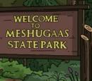 Meshugaas State Park