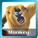 Monkey-portal-KFPH.png