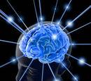 Manipulation Cérébrale