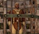 Uwięziony qunari
