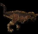 Karnotaur - Thorny Devil