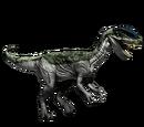 Dilofozaur - skórka Lichen
