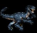 Novaraptor - skórka Frostbitten