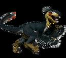 Novaraptor - skórka Falcon