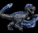 Novaraptor - skórka Frozen