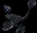 Owiraptor - skórka Fowl
