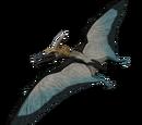 Pteranodon - skórka Seaspray