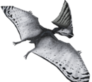 Tupandaktyl - skórka Ivory