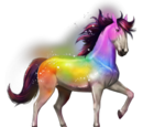 Secret Rainbow