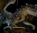 Wyrm (Dragon's Dogma)