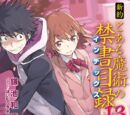 Shinyaku Toaru Majutsu no Index Light Novel Volume 13