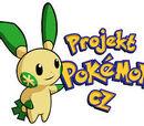 New Pokemon Game????