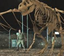 T. Rex-Pteranodon Skeletal Hybrid
