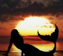Mermaid Magic (MermaidMagic33)