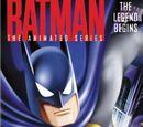 Batman: The Legend Begins (VHS)