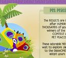 Pet Peacock