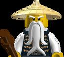 Sensei Wu (Time Adventures)