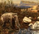 Palaeoloxodon mnaidriensis