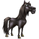 Andalusian Horse.png