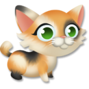 Calico Kitten.png