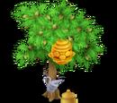 Beehive Tree