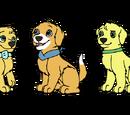 The Calm After The Storm: StormXAlexa Pups