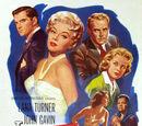 Imitation of Life (1959 film)