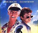 Flipper (1996 film)