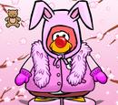 Bunny Clothes
