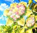 Colorage Flower