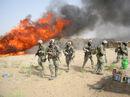 Burning hashish seized in Operation Albatross.jpg