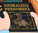 Anomalous Phenomena