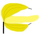 Banana Cannon