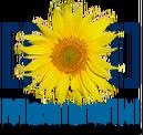 MediaWiki标志.png