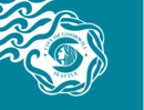 Seattle Flag.png