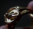 Pierścień Reverse-Flasha