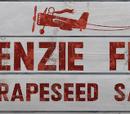McKenzie-Feldhangar und -Flugfeld