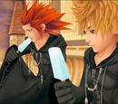 Kingdom Hearts/Ships/Slash