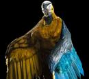 Macaw/Human Hybrid