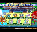 Surprise Squirrel Shop